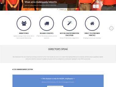 Corporate website in Wordpress CMS