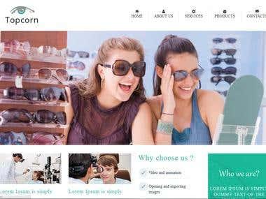 optical website