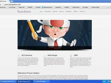 Website Developed For Procon Solutions