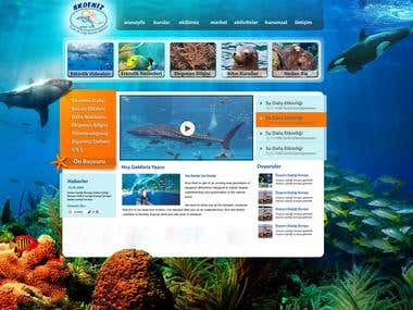 Scuba Diving Project 2