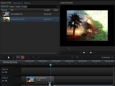 Desktop Video Editor