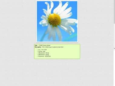 Z snip Screenshot Capture Based Web+windows application