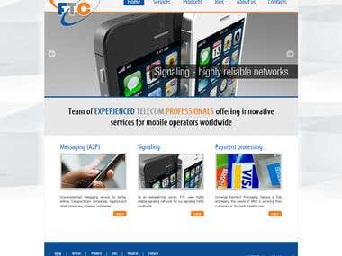 Informative Website for Telecom Company