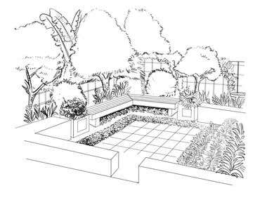 landscaping illustrations
