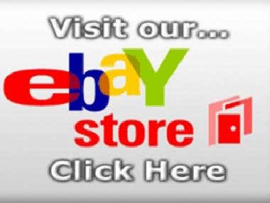 Customized E-bay Store application