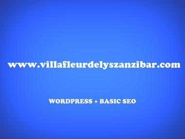 WEBSITE + BASIC SEO