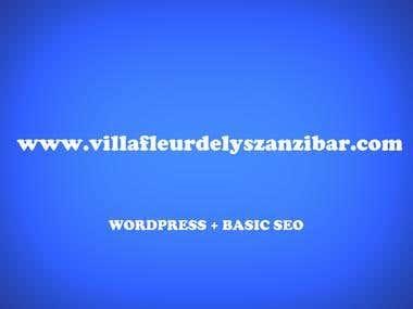 WEBSITE + BASIC SEO