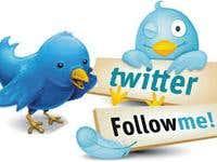 Guranteed Global real Follower