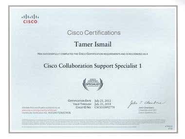 Cisco Collaboration Support Specialist