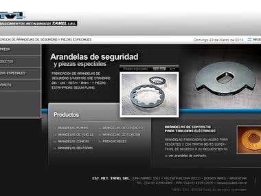 Diseño y animación de web.