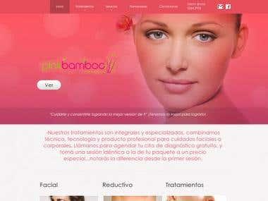 Pagina web corporativa spa