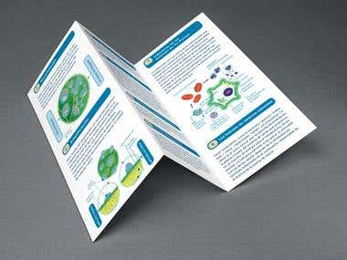 Vegalab brochure