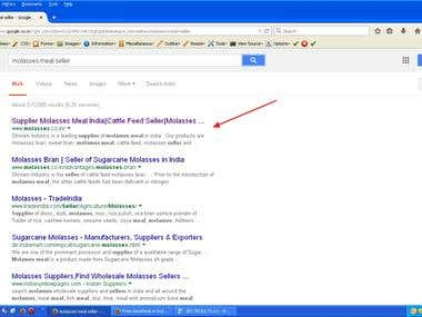 SEO-Your website in First page of google search