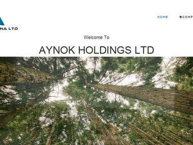 AYNOK HOLDING LTD Websites