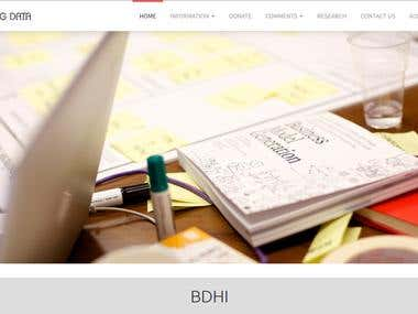 BDHI (Big Data Research)