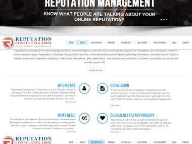 Web Designing- Reputation Consulting Firm