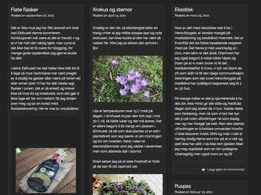 Wordpress blogg (Eldhuset)