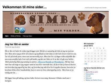 Wordpress blogg (Simba)