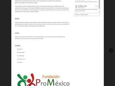 Development of our website Promexico Foundation Young AC