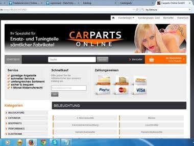 catalog.iceflag.com