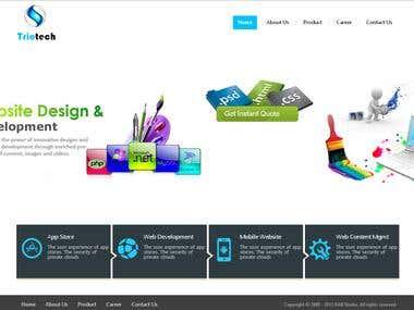 Website for Triotech