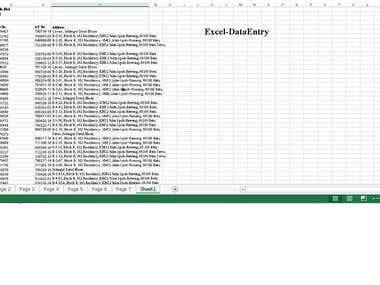 Excel Professional  Work