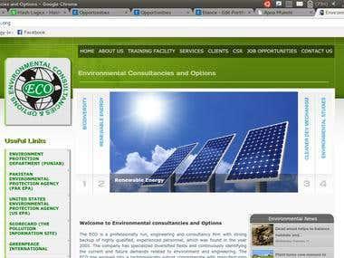 ECO-INTL website
