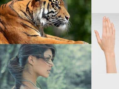 Photo Manipulation Tiger and Woman