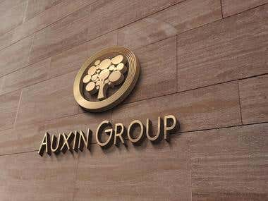 Auxin Group