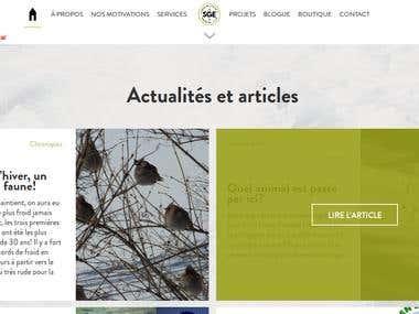 Webflow HTML/CSS/JS to Wordpress