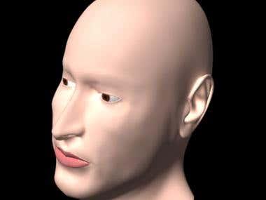 3D MODEL - Goibaman Face