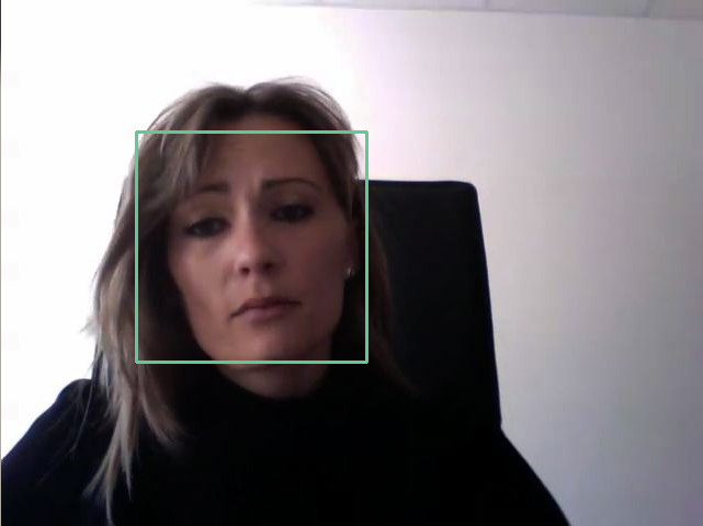 Face detection and gesture recognition in Python with OpenCV