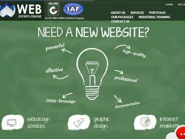 web expert online