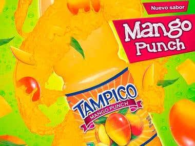 Afiche para Tampico