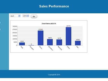 Sales Performance chart and details