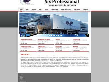 6P Professionals