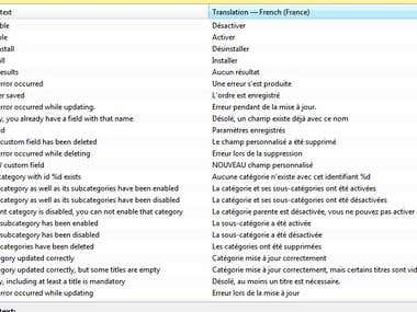 Software translation from English into French