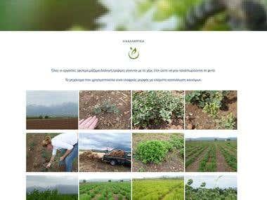 Herbs Company