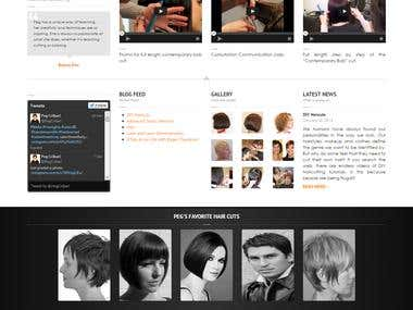 WordPress based E-learning website for hair stylers.