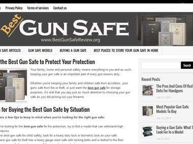 Best Gun Safereview Website