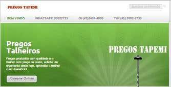 Desenvolvimento site Pregos Tapemi