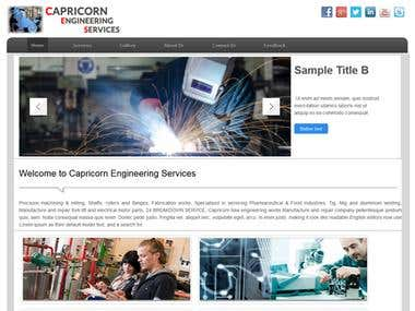 Capricon Engineering services