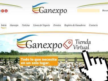 Tienda virtual - Comercio Electronico Ganexpo