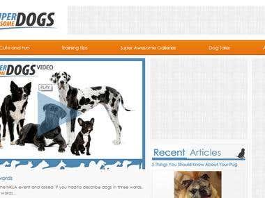 Wordpress- videos and photo albums