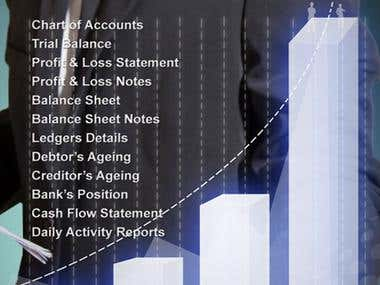Financial Accounting System (General Ledger)