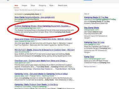 11 Months SEO Campaign - Google, Msn