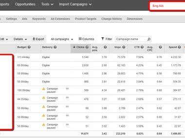 Bings Ads Management