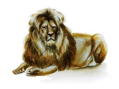 Animals in watercolor
