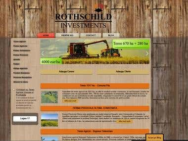 SEO and Web Design - Rothschild Investments