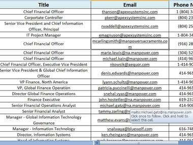 Contact Information - CEO Information Technology